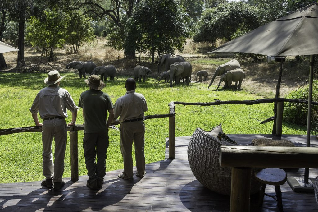 Zambia's top attractions, Zambia's Top Attractions…, African Safari Experts, African Safari Experts
