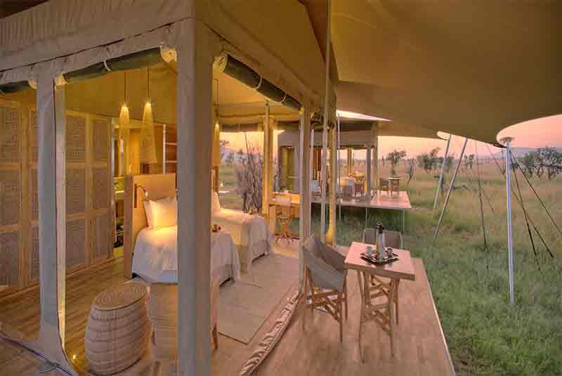 roving bush tops mobile safari