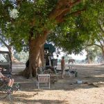 People at a campsite under shaded trees alongside the Zambezi river