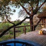 Londolozi Varty Camp, Londolozi Varty Camp, African Safari Experts, African Safari Experts