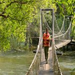 a rope bridge over a river with a person walking on it