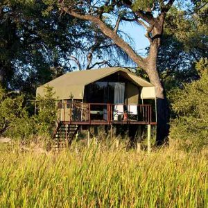 A tent on stilts among trees at Nkasa Lupala