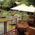 A small deck with chairs and waterhole
