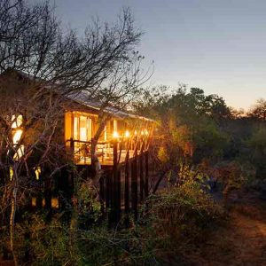 A small house on stilts set in the bush of Africa