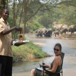 A guest is served a beer while sitting on the river bank watching Elephants
