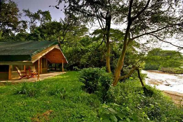 Chalet set on the banks of a river at Ishasha Wilderness Camp