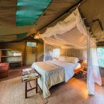 a room interior with double bed and mosquite net