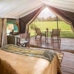 Interior view of a safari tent with double bed and views out to the bush