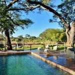 A swimming pool set under trees' at Elephant Valley Lodge
