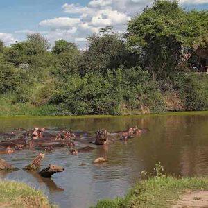 Grumeti Serengeti Camp
