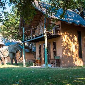 a wood and brick chalet with an elephant in front of it
