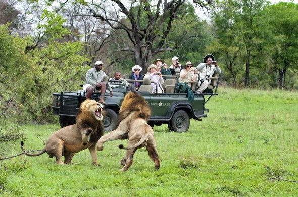 malaria free safaris, Malaria Free Safaris, African Safari Experts, African Safari Experts