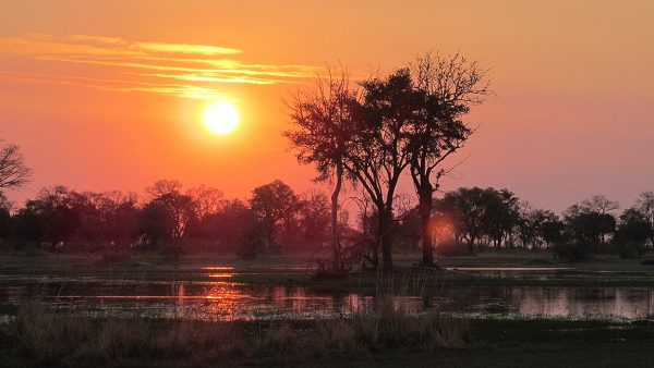 Luangwa and Livingstone, Luangwa and Livingstone – 8 Days, African Safari Experts, African Safari Experts