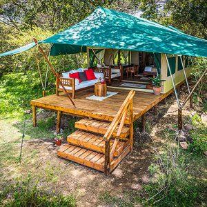 losokwan camp, masai mara, tent, deck, shade, trees, africa, african safari epxerts