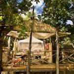 Kafue & South Luangwa - 10 Days