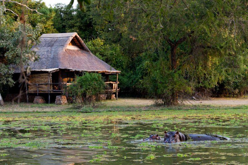 mfuwe, lodge, south luangwa, zambia, africa, african safari experts