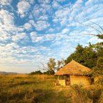 kuyenda, africa, zambia, south luangwa, bushcamp company, african safari experts