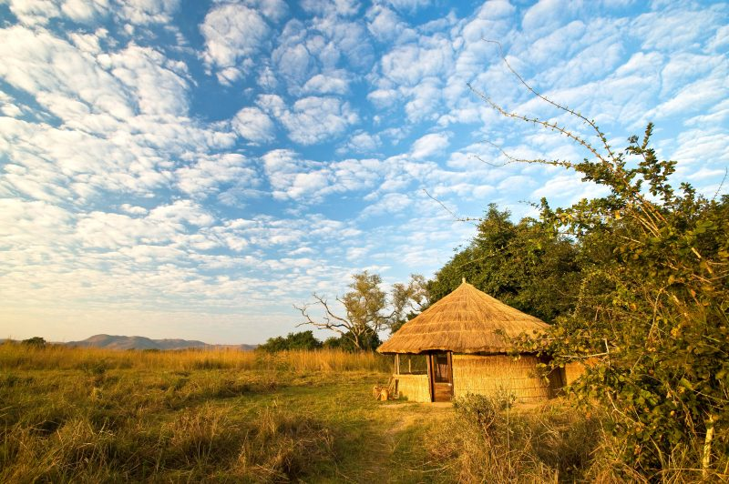 kuyenda, africa, zambia, south luangwa, bushcamp company, african safari experts