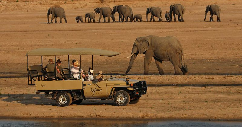 Here's why you should visit South Luangwa…