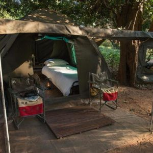trail, tent, kruger national park, south africa, africa, trail, bush, hiking