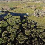 aerial view of Gunns Camp in the Okavango Delta