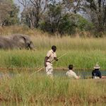 People in mokoro with guide poling and an elephant feeding in the background