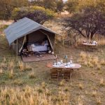 mobile moremi, Botswana Mobile – 7 Days, African Safari Experts, African Safari Experts
