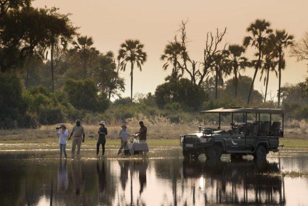 sandibe, game, drive, game drive, bush, africa, botswana, safari,