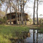 sandibe, room, luxury, trees, africa, bush, botswana, african safari experts