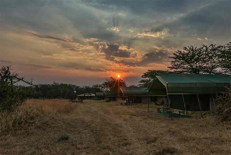 Nasikia camp at dusk