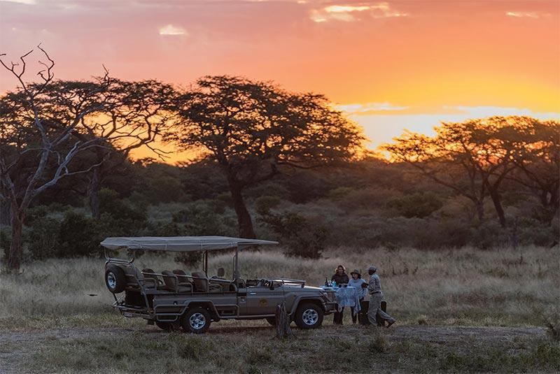 Top 5 Family Safari Lodges in Zambia