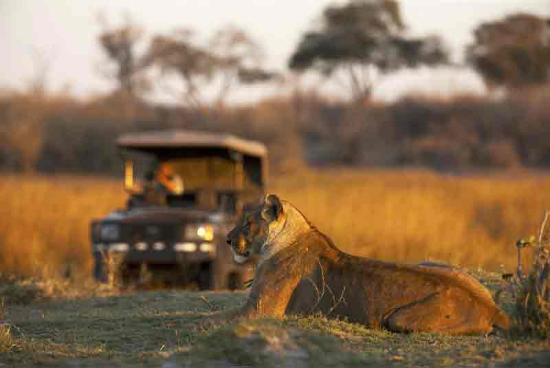 The Top 10 Pandemic Retreats in Africa