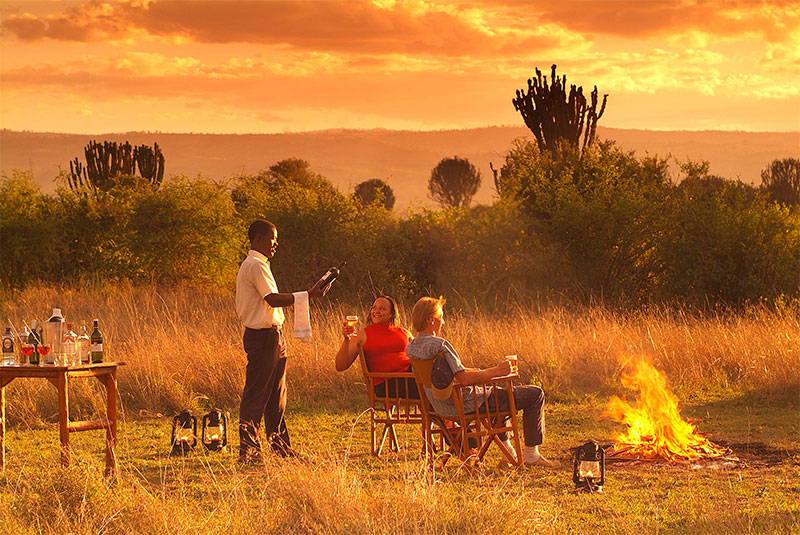 Top 10 Reasons to Book Your Safari NOW!