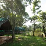 tents on the banks of the Mara River at Governers Il Moran Camp