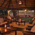 An open lounge area looking over several Elephants at Elephant Valley Lodge