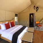 Interior view of a guest tent at Kwihala