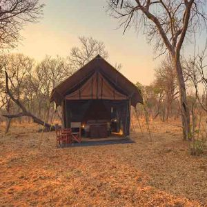 A luxury tent set amongst trees at Chobe Under Canvas