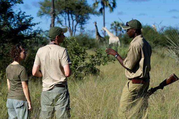 Tubu Tree Camp, Tubu Tree Camp, African Safari Experts, African Safari Experts