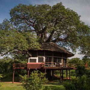 Tarangire Treetops