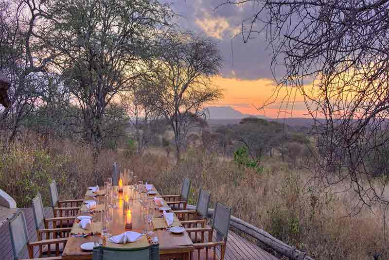 A dining table set out on a deck overlooking the African bush