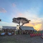 Two tents under a tree in East Africa