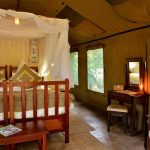A tent suite with twin beds at Elephant Valley Lodge