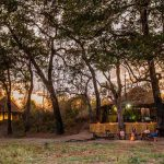 Chikoko Trails