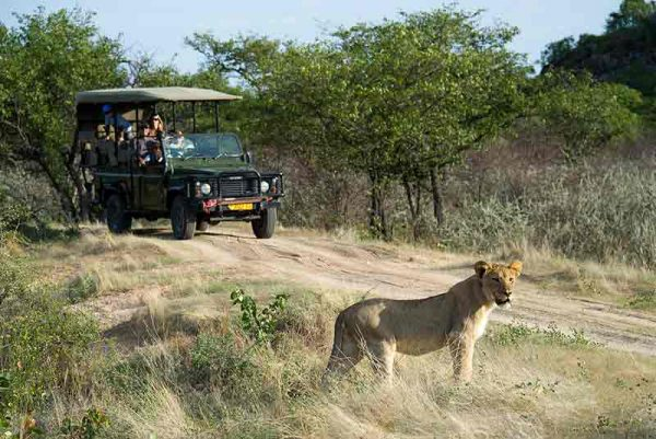Dunes & Seaside, Dunes & Seaside – 10 Days, African Safari Experts, African Safari Experts