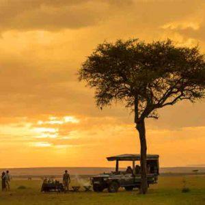 A safari vehicle under a tree on the plains of the Masai Mara at dusk