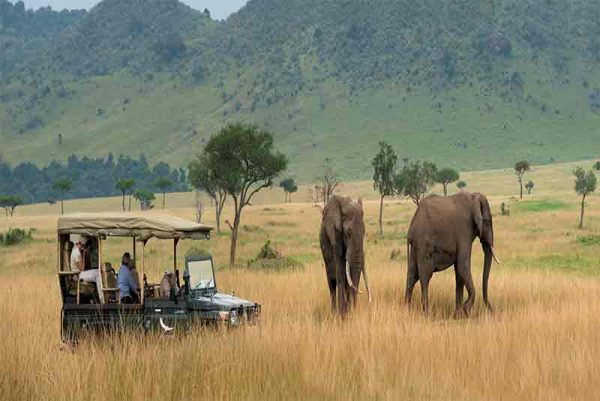 Bateleur Camp, Bateleur Camp, African Safari Experts, African Safari Experts