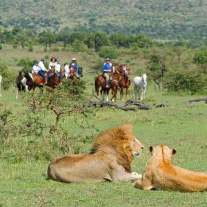 Offbeat Riding Safari's