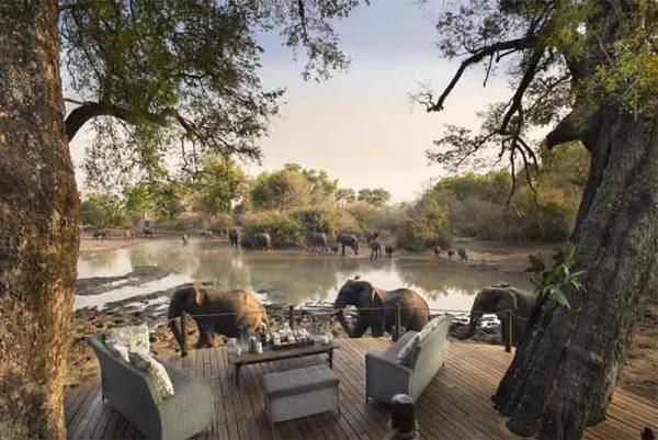 Full Safari Circuit, Full Safari Circuit – 18 Days, African Safari Experts, African Safari Experts