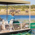 People on a boat watching elephants walking on a river bank