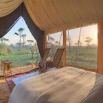 A tented suite with double bed and views at sunrise of the African bush